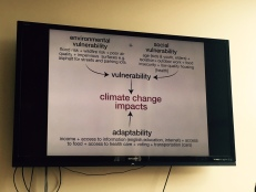 Exploring the complex socio-spatial dimensions of climate change vulnerability and linking it to issues of race, public health, environmental justice, and environmental design.